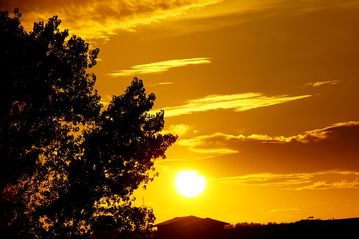Sunset, Trees, Silhouette, Sun, Dusk, Backlighting