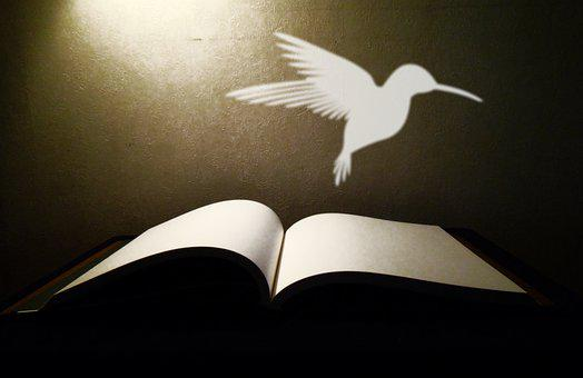 Book, Pages, Open Book, Imagination, Reading, Symbol