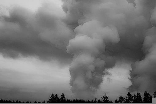 Clouds, Steam, Trees, Forest, Billow, Sky, Landscape