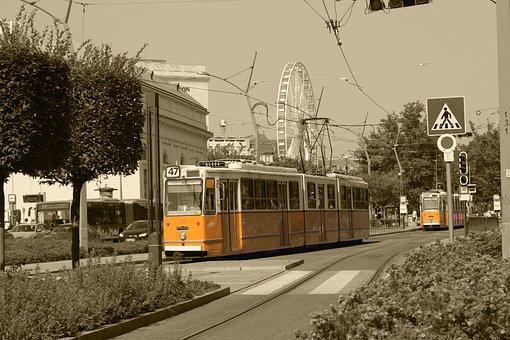 Tram, Train, Transport, Vehicle, Bridge, Transportation