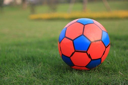Ball, Toy, Grass, Field, Soccer Ball, Play, Game, Sport