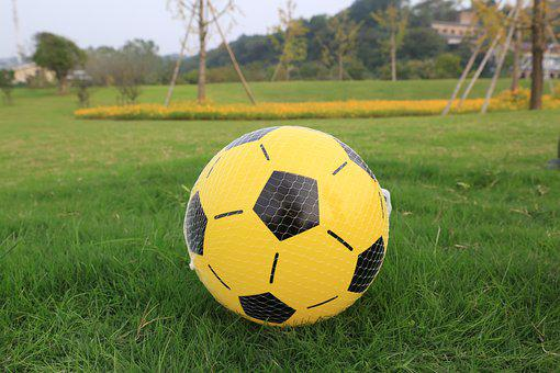 Ball, Toy, Net, Grass, Field, Soccer Ball, Play, Game