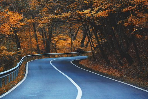 Road, Highway, Curve, Trees, Leaves, Autumn, Scenery