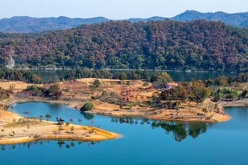 River, Coast, Forest, Trees, Island, Okjeongho