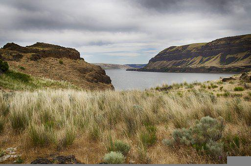 Canyon, Cliffs, River Bank, River, Grasses, Sagebrush