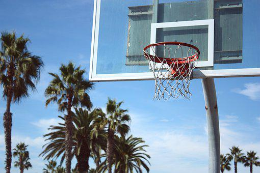 Basketball, Basketball Hoop, Board, Backboard