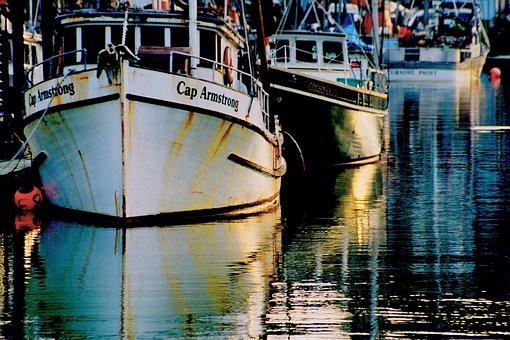 Fishing Boats, Coast, Harbor, Bay, Yaquina Bay, Marina