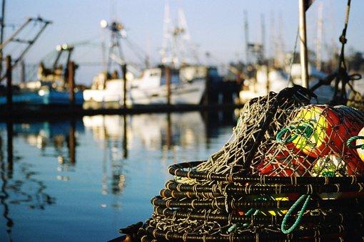 Coast, Fishing Boats, Reflection, Crab Pots