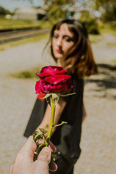Hand, Rose, Give, Girl, Model, Portrait, Fashion, Style