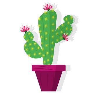 Cactus, Plant, Pot, Botany, Gardening, Digital Drawing