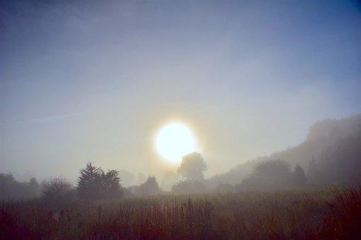 Fog, Morning, Nature, Autumn, Countryside, Foggy, Fall