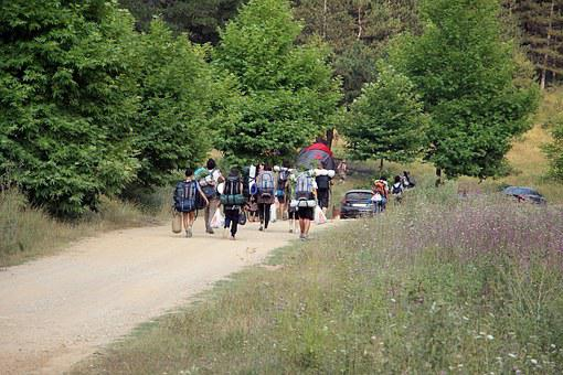 Camping, Forest, People, Nature, Camp, Adventure, Tent
