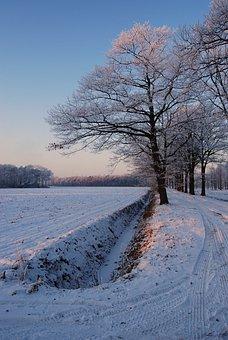 Winter, White, Frost, Snow, Snow Landscape, Nature
