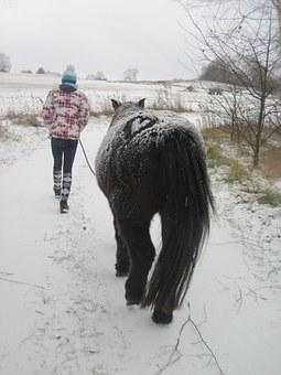 Pony, Snow, Child, Winter, Snowed In, Heart, Rap, Black