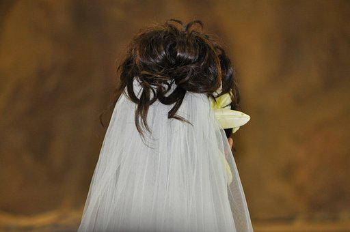 Wedding, White, Married, Veil, Bride And Groom, Marry
