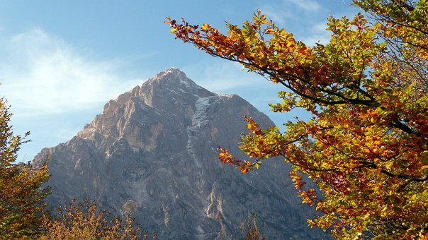 Autumn, Tree, Leaves, Mountain, Landscape, Scenic