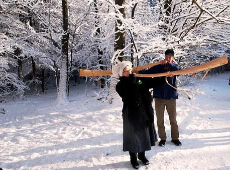 Winter Horn, Winter, Snow, Snowy, White, Branch, Tree