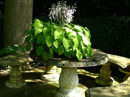 Idyll, Garden Bench, Stone Table, Plant, Light, Shadow