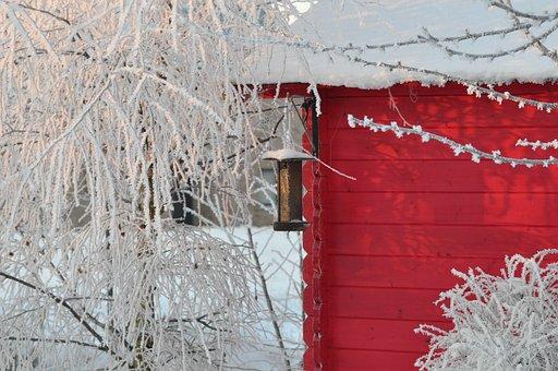 Winter, Snow, Garden Hut, December, Snowy Branches