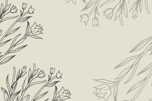 Flowers, Plants, Border, Frame, Floral Border