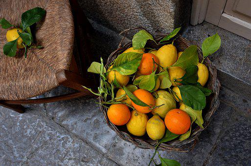 Fruits, Basket, Harvest, Products, Food, Oranges