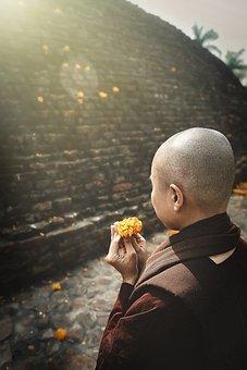 Pray, Buddhist, Buddhism, Prayer, Religion, Nun