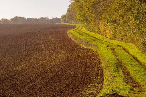 Fields, Land, Farm, Farmland, Soil, Trail, Path, Grass