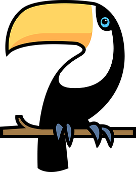Toucan, Bird, Bill, Exotic Bird, Tropical Bird, Perched