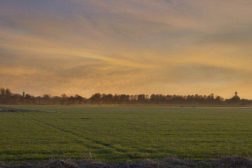 Field, Pasture, Dusk, Sunset, Evening, Fog, Mist