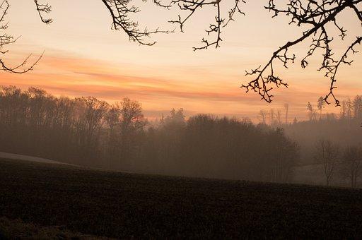 Nature, Morning, Trees, Landscape, Field, Sky, Autumn