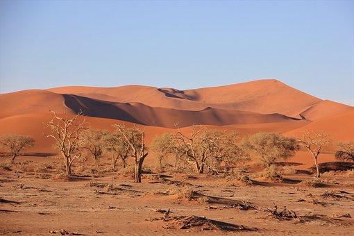 Africa, Namibia, National Park, Sossusvlei, Desert, Dry