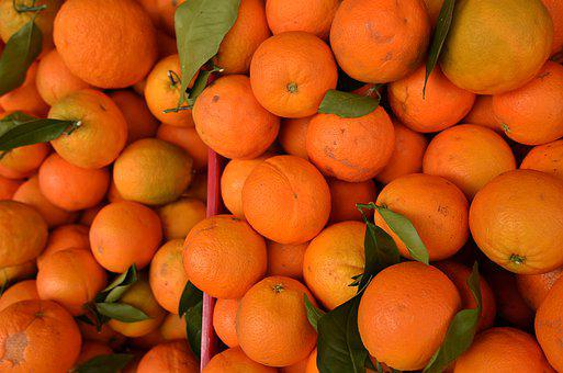 Fruits, Harvest, Products, Food, Oranges, Healthy