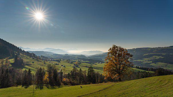 Landscape, Nature, Mountains, Sky, Autumn, Tree