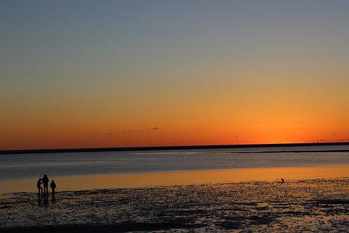 Sunset, Beach, Family, Dusk, Evening, Silhouette, Ocean
