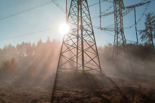 Power Lines, Trees, Sun, Electricity