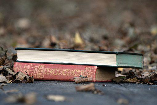 Books, Literatures, Leaves, Brown Leaves, Dry Leaves