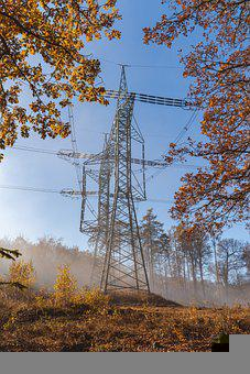 Power Lines, Overhead Power Lines, Trees, Electricity