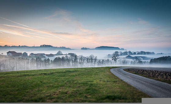 Road, Meadow, Fog, Sunset, Dusk, Field, Hill, Trees