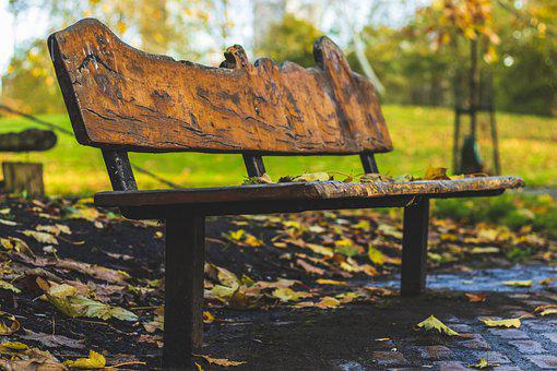 Park, Bench, Outdoors, Seat, Wet, Leaves, Autumn, Fall