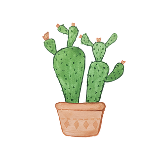 Watercolor, Painting, Cactus, Plant, Potted, Pot