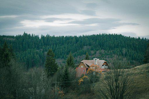 Forest, Trees, House, Cabin, Cottage, Mountain Hut