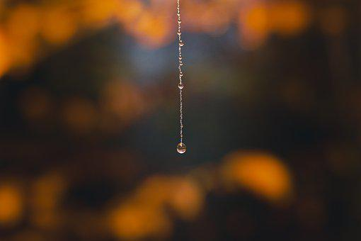 Water, Drip, Drop, Water Droplets, Dripping