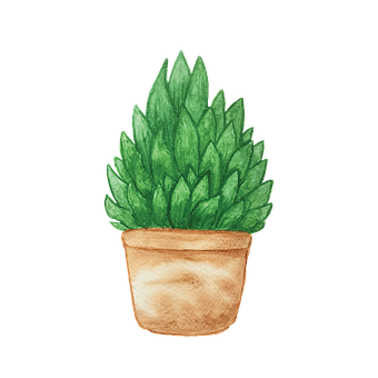 Watercolor, Painting, Plant, Pot, Potted, Potted Plant