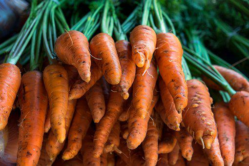 Carrot, Vegetables, Healthy, Fresh, Raw, Nutrition