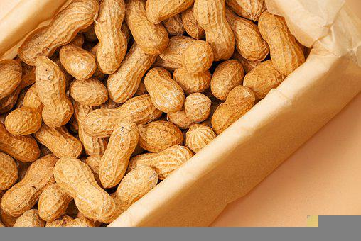 Peanuts, Nuts, Food, Healthy, Nutrition, Snack, Organic