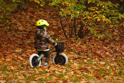 Child, Autumn, Bike, Park, Small Bike, Biking