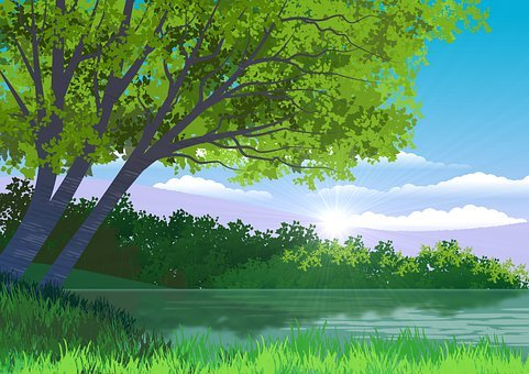 Lake, Trees, Sunlight, Scenery, Scenic, Water, Forest