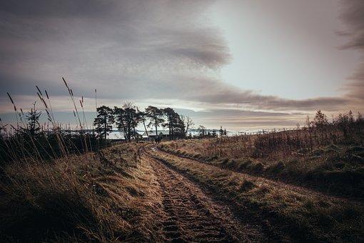Agriculture, Path, Track, Duke Of Edinburgh, Hiking