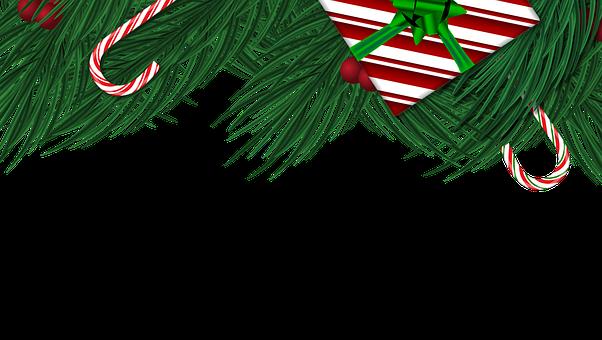 Christmas, Tree, Pine, Pine Tree, Christmas Tree