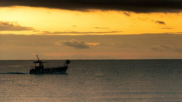 Boat, Sea, Fishing, Fishing Boat, Vessel, Sailing